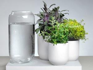 система автополива для комнатных растений