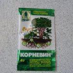 Синтетический стимулятор роста корней у различных растений Корневин: инструкция по применению в сухом и разведённом виде