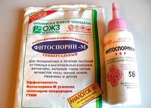 как применять Фитоспорин для комнатных растений