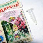 Биостимулятор роста для растений Циркон: инструкция по применению для положительного воздействия на комнатные и садовые цветы