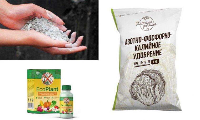Удобрение для лещины